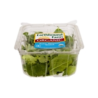 Earthbound Farm Organic Baby Spinach Blend Food Product Image