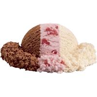 Neapolitan Ice Cream Food Product Image